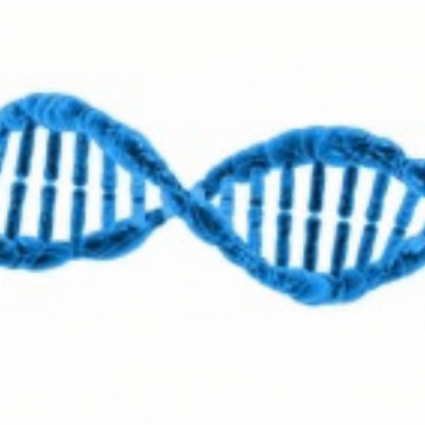 MNJGS Event: You've Done Your DNA - Now What?