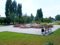 Зона отдыха в парке - клумба ромашка, тротуарная плитка