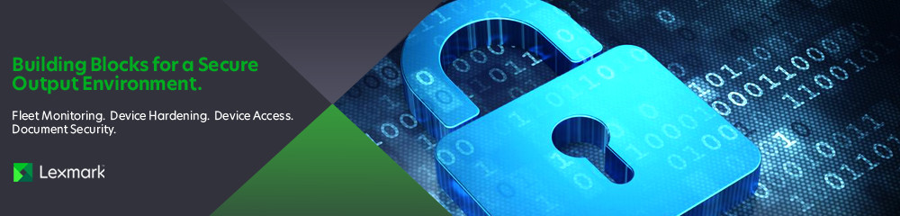 Building Blocks for a Secure Output Environment