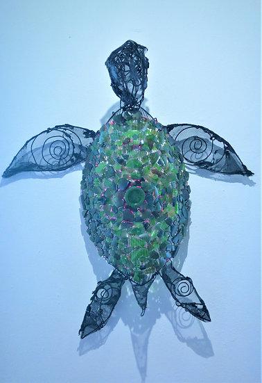 Heineken Turtle