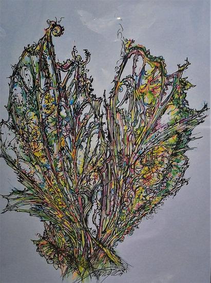 Fan Coral Fly