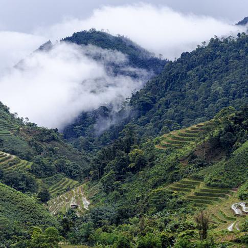 Bewolking in de bergen van Noord-Vietnam
