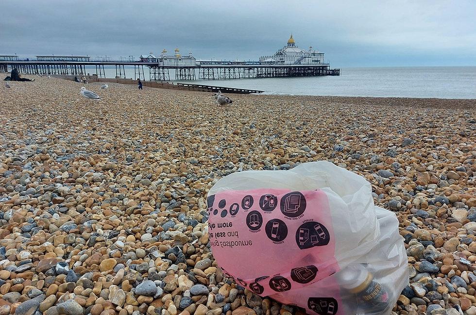 rubbish-bag-beach_edited.jpg