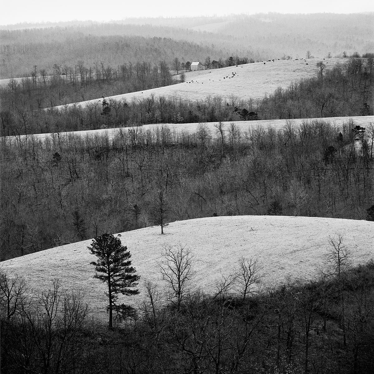 Eureka Springs Hills, 1970