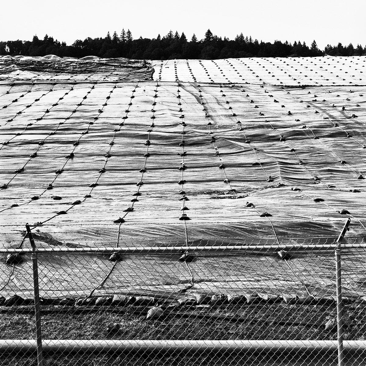 Landfill near Eugene, Oregon, 1996