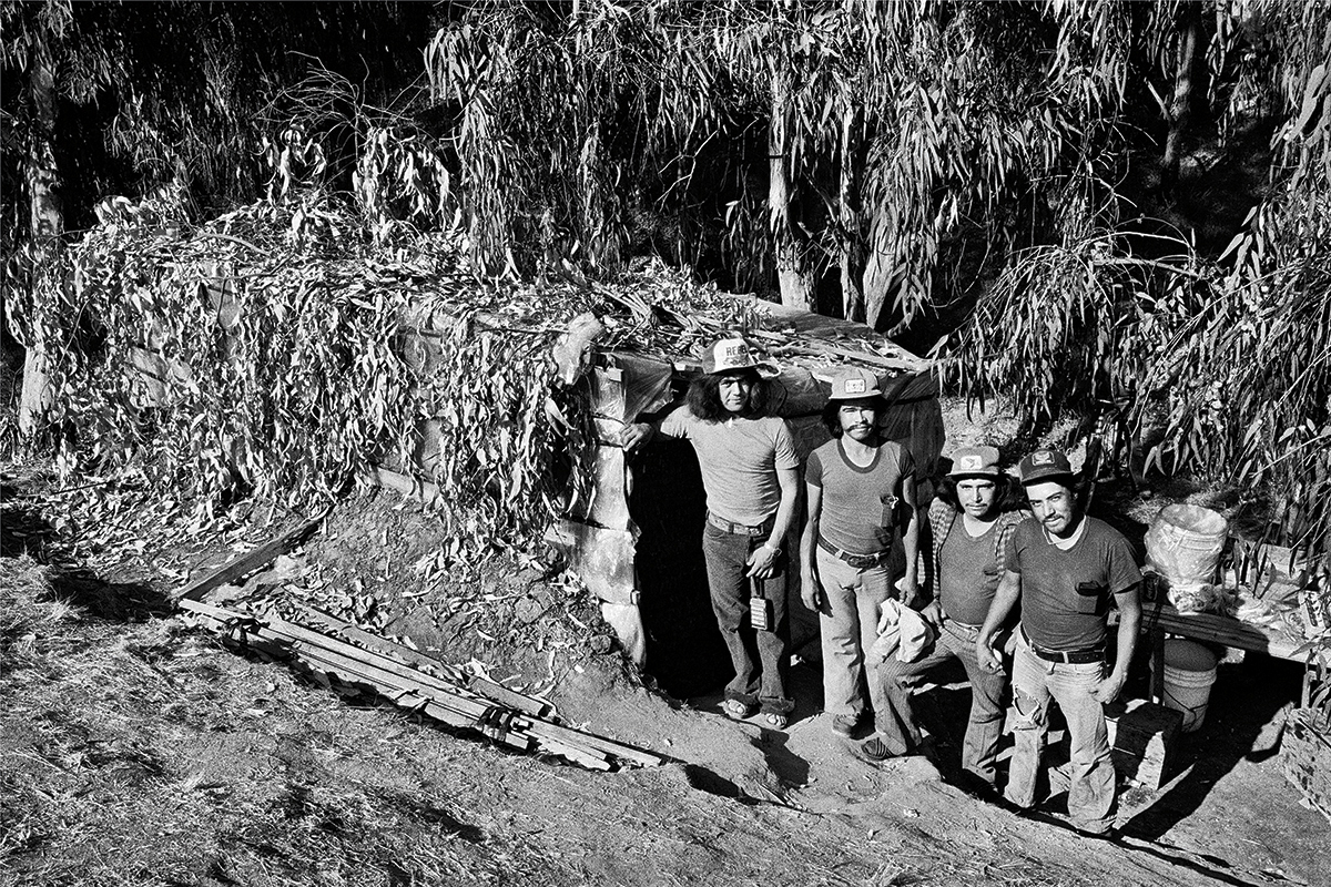 Four Fieldworkers & Brush Covered Dwelling, 1979