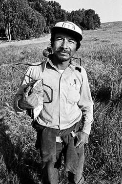 Fieldworker Holding Picking Bracket , 1979