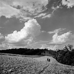 Ed Stilley Plowing Hilltop Field, 1973