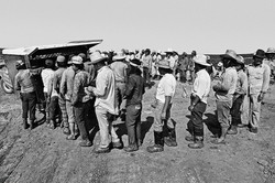 Fieldworkers Lined Up at Lunch Wagon, 1979