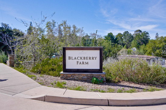 Blackberry Farm
