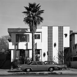 Apartment & Palm, 1975