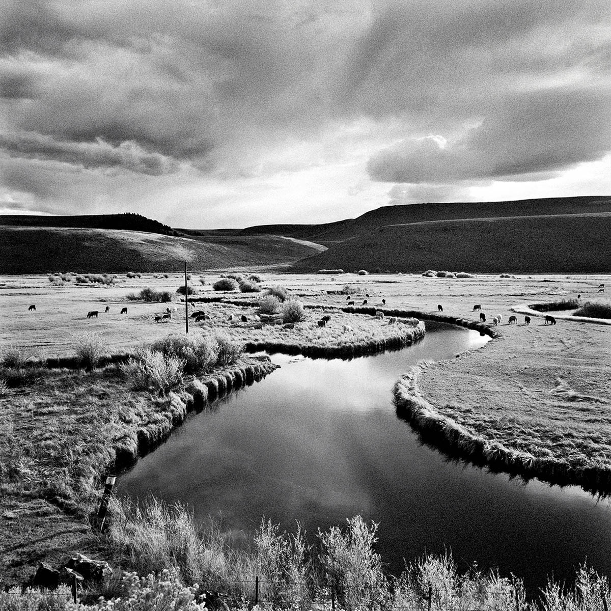 Gunnison River, Colorado, 1997