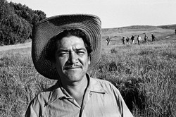 Fieldworker Coming in From Fields, 1979