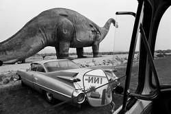 Roadside Attraction, 1976