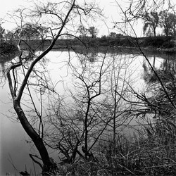 Steamboat Slough, 1993