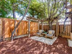 Backyard      13.jpg