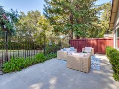 Backyard      8.jpg