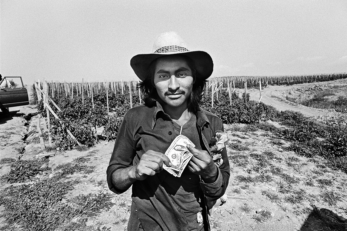 Fieldworker with Dinero, 1979