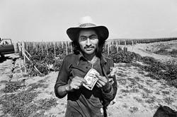 Fieldworker with Dinero, 1979