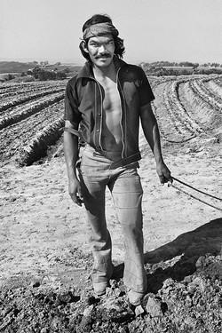 Fieldworker with Bandana, 1979