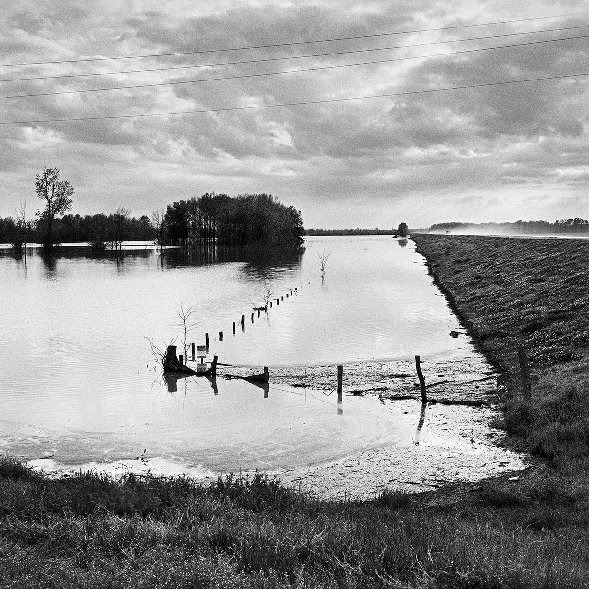 Flooded Field & Levee near Greenville, Mississippi, 1997