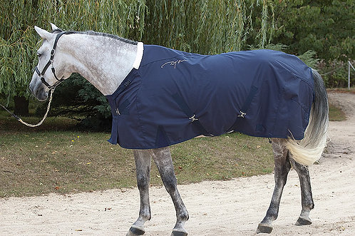 Dy'on Summer Stable Rug