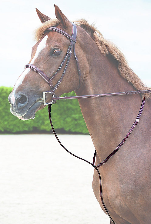 Dy'on Hunter Standing Martingale
