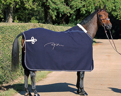 Dy'on Wool Show Rug