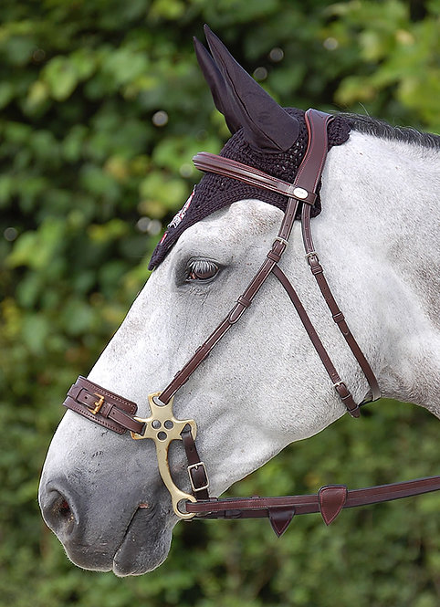 Dy'on Hackamore Bridle