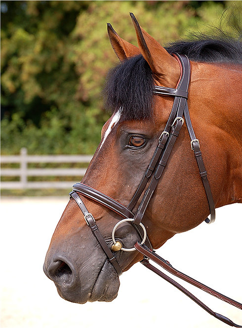 Dy'on Working 'Classic' Flash Bridle