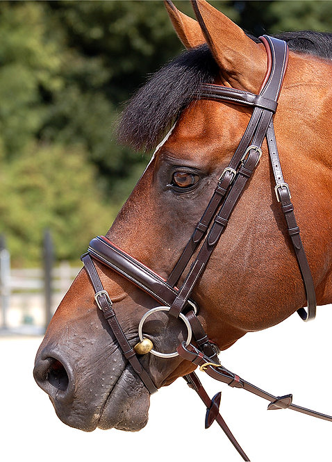 Dy'on Working 'Classic' Crank Bridle