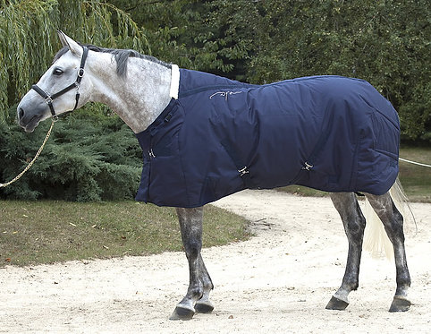 Dy'on Winter Stable Rug