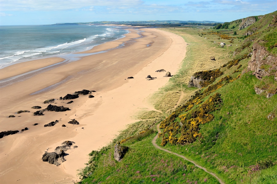 St Cyrus Beach & Nature Reserve