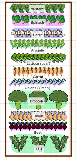 Phase 1 Plant Map