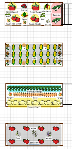 Spring Plant Map