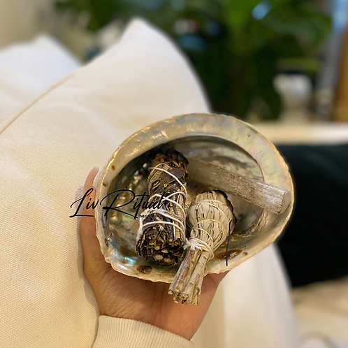 Extra Large Abalone Shell Ashtray