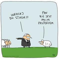 stado.png