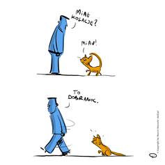 miau2.png