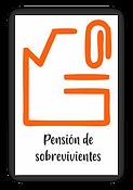 10_pensión_de_sobrevivientes.png