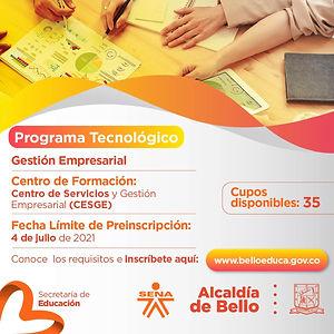 Gestión empresarial (11).jpg