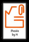 13_pensión_ley_91.png