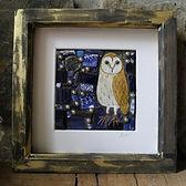 1 Midnight owl.JPG