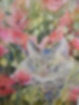 Cat in the poppy meadow