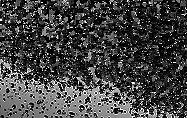Water Drops Transparent