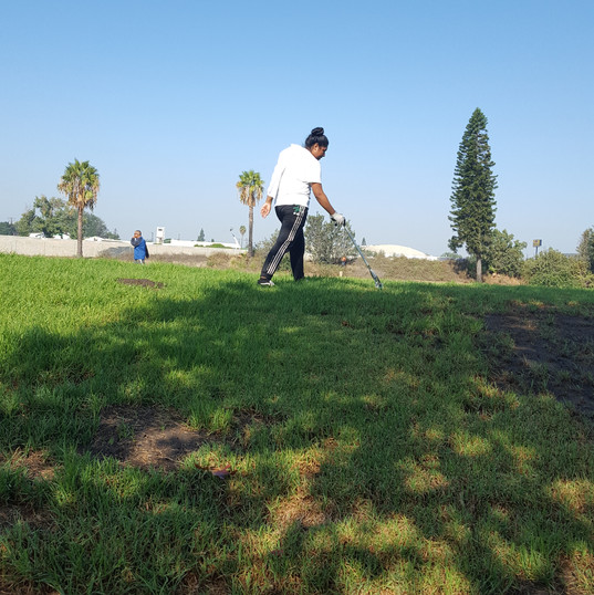 Hollydale Park Cleanup