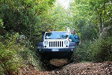 Jeep1_edited.JPG