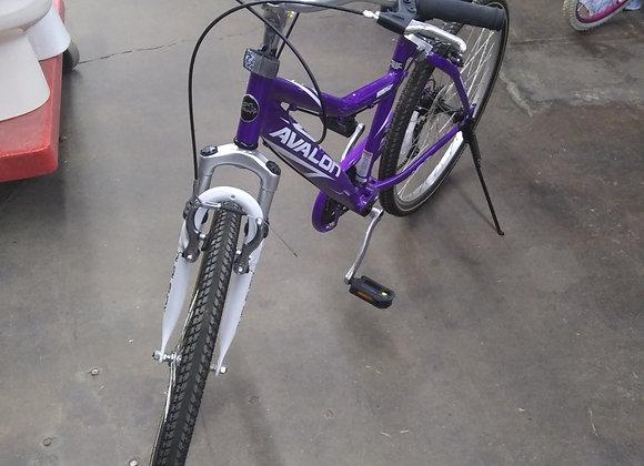Baraboo - Avalon bicycle