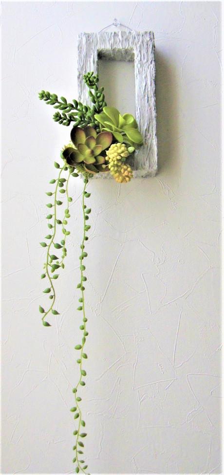 多肉植物の壁掛け