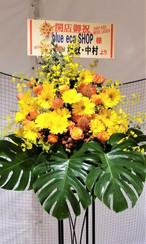 新規ご開店のお祝花