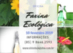 Oficina_Faxina_Ecológica_10-02-2019.jpeg